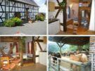Hennef-Busch: Pension Islandpferdehof- Hanfbachtal